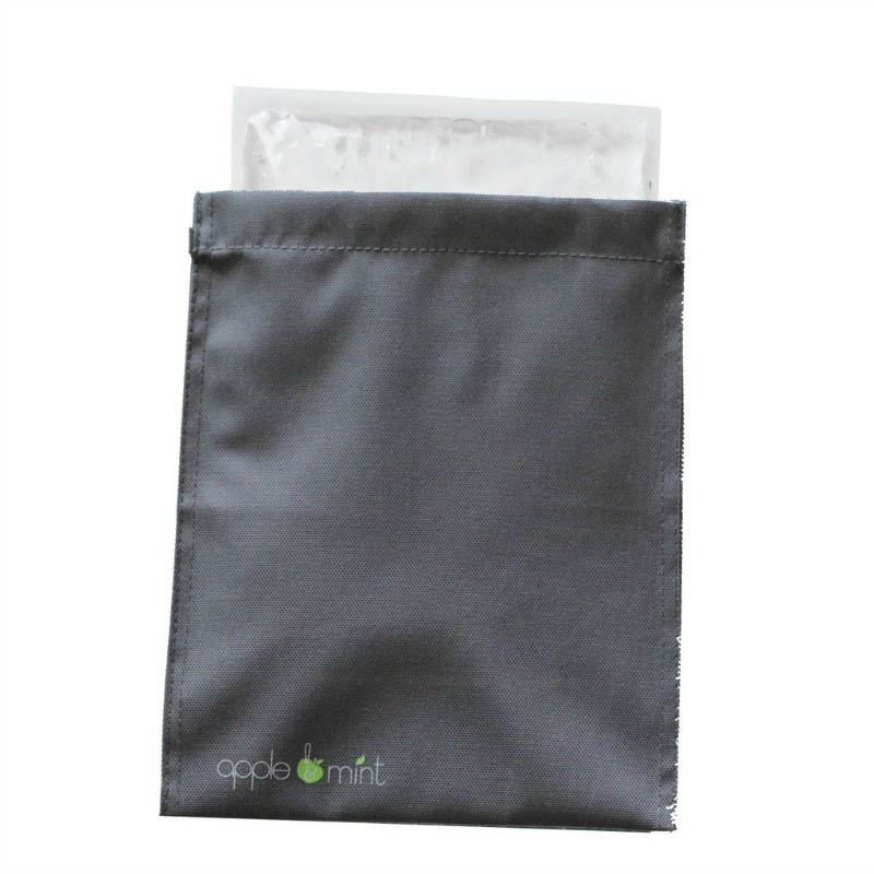Apple and Mint - Lunch Bag Cooling Panel
