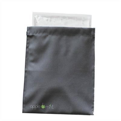 Apple and Mint Lunch Bag Cooling Panel