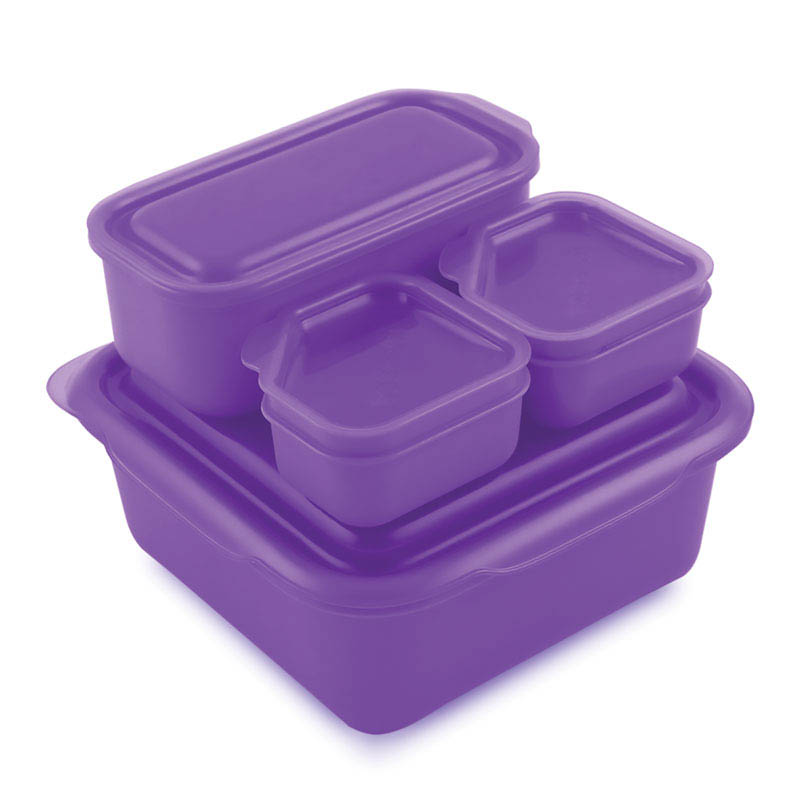 Goodbyn Portions on the Go - Purple
