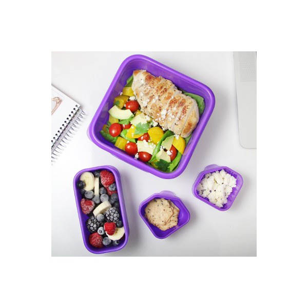Goodbyn Portions on the Go Lunch box