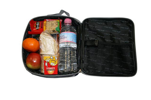 Fridge To Go Lunch Bag Medium