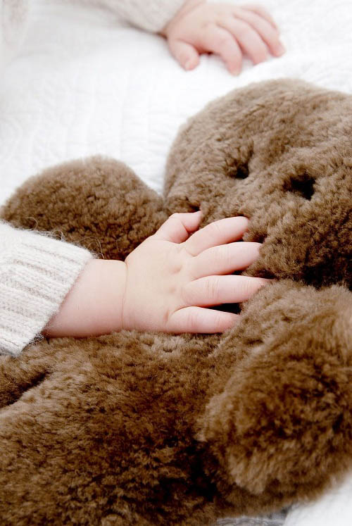 Flatout Bear Soft Toy Bear