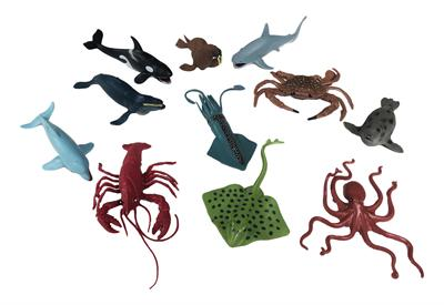 Aquatic Animal Collection