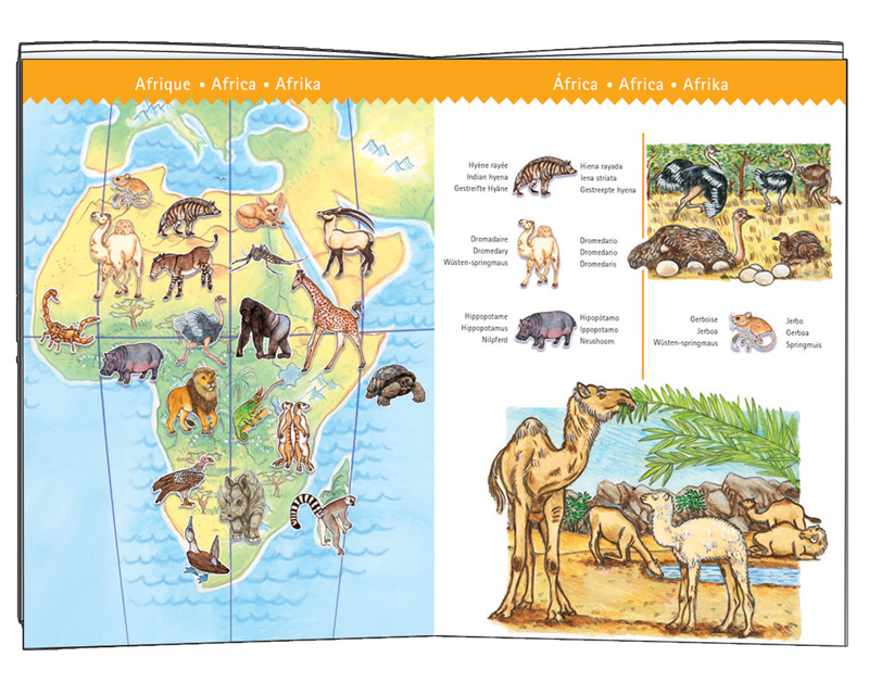 Djeco Observe World's Animals Puzzle 100pcs & Booklet