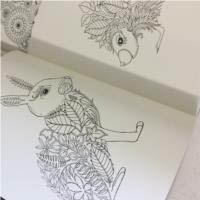 Enchanted Forest : Inky Treasure Colouring Book