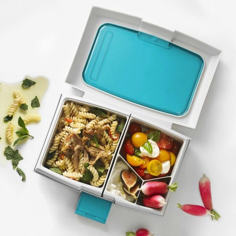 9d179b84ae65 Fuel Bento Lunch Box