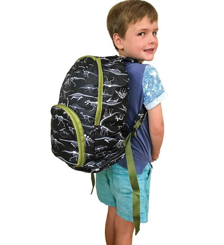IS Fun Times Foldable Dinosaur Backpack