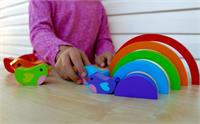 Puz^Bird and Rainbow Puzzle