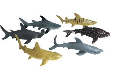 Shark Animal Collection