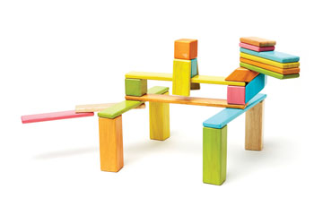 Tegu Magnetic Wooden Blocks - 24pc