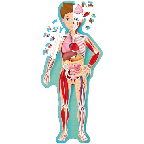 The Human Body Jigsaw Puzzle