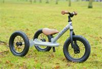 Trybike Steel Silver 2 in 1 Balance Bike