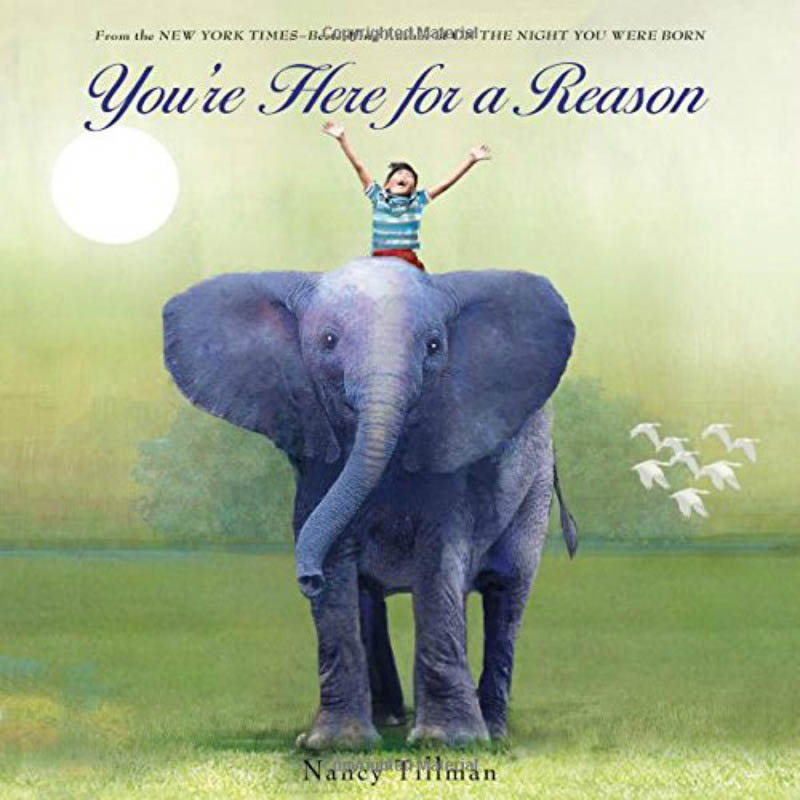You're Here For A Reason by Nancy Tillman